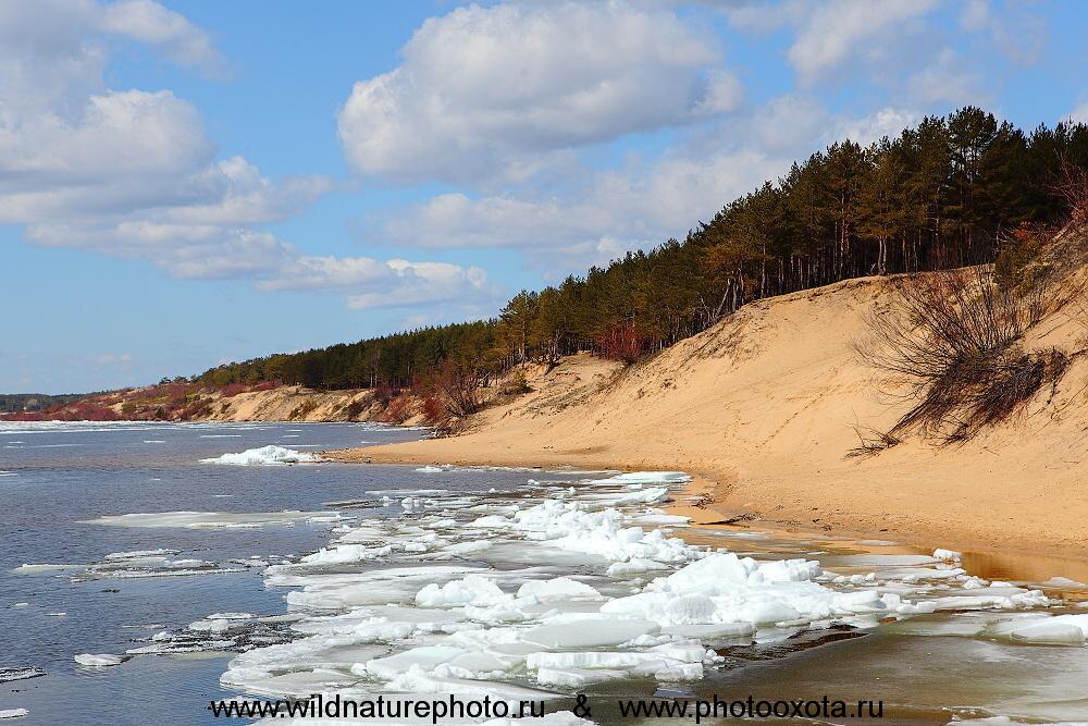 берег реки Волга